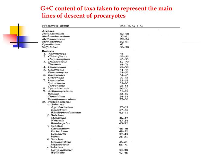 G+C content of taxa taken to represent the main
