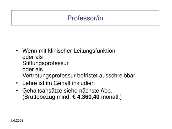 Professor/in