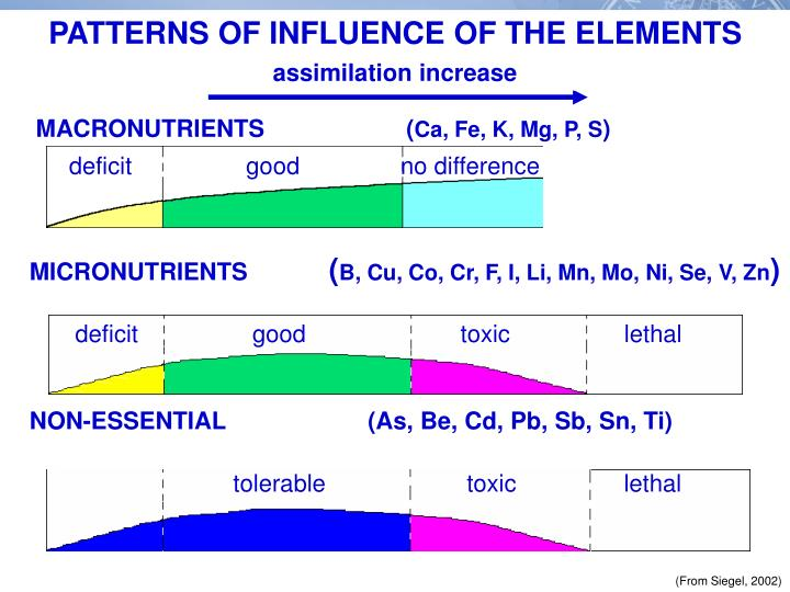 PATTERNS OF INFLUENCE OF THE ELEMENTS