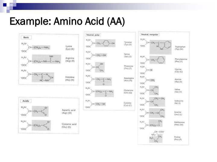 Example: Amino Acid (AA)