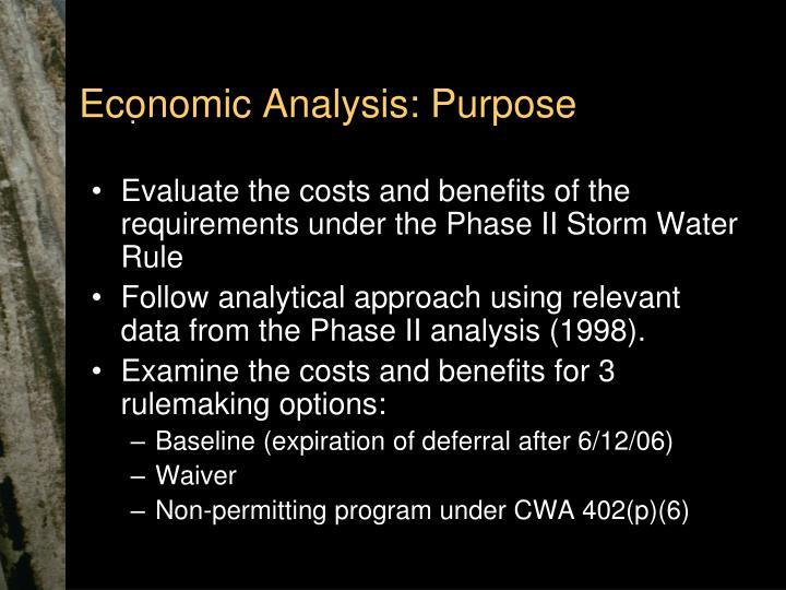 Economic Analysis: Purpose