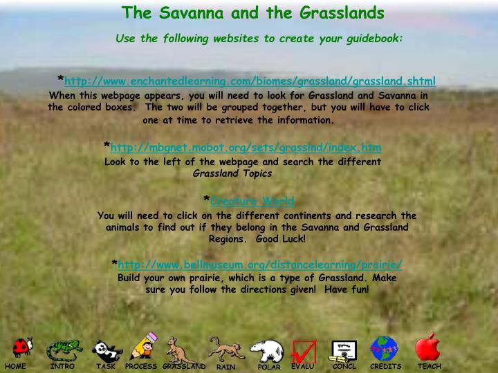 The Savanna and the Grasslands