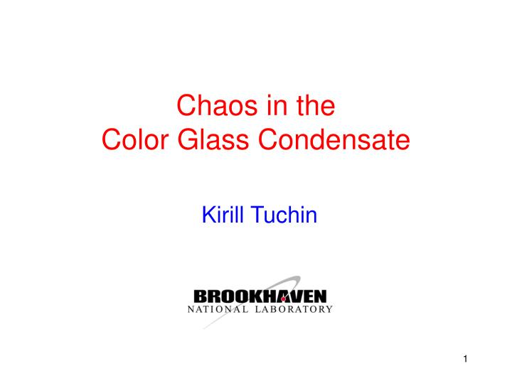 chaos in the color glass condensate n.