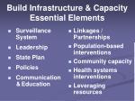 build infrastructure capacity essential elements