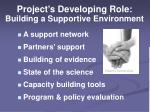 project s developing role building a supportive environment