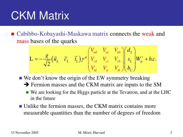 Ckm matrix