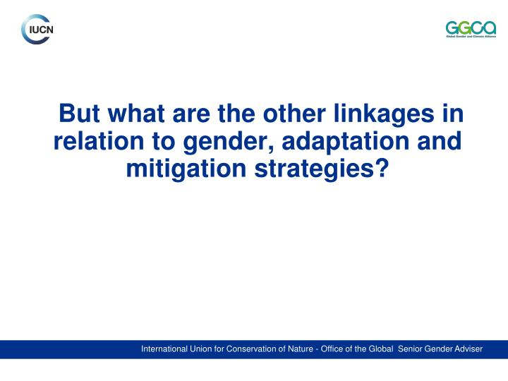 But what are the other linkages in relation to gender, adaptation and mitigation strategies?