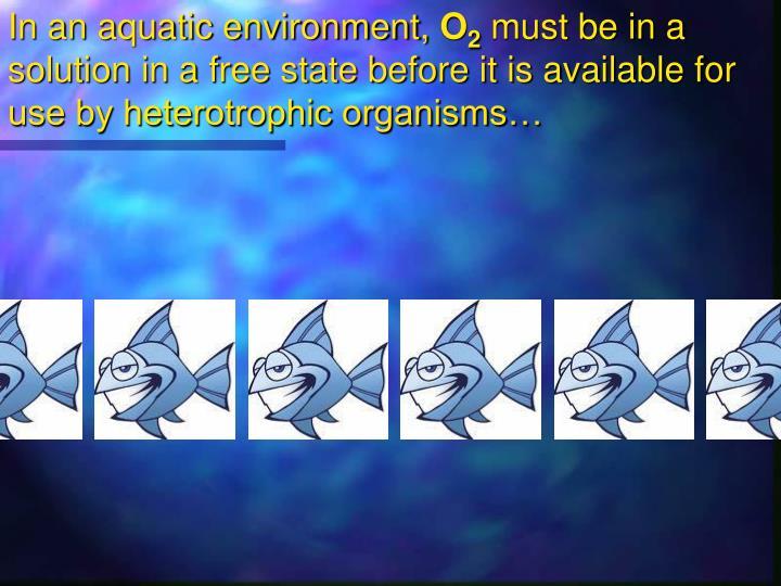 In an aquatic environment,
