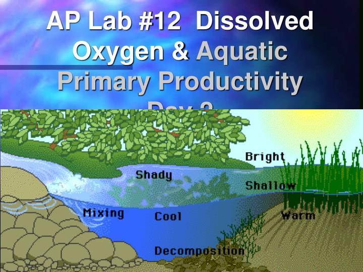 AP Lab #12  Dissolved Oxygen &