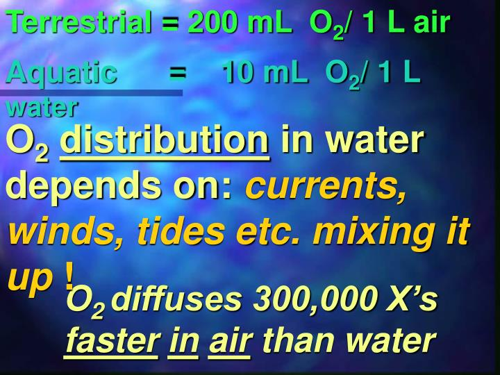 Terrestrial = 200 mL  O