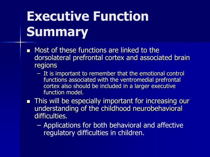 Executive Function Summary