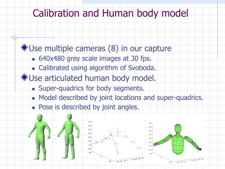 Calibration and human body model
