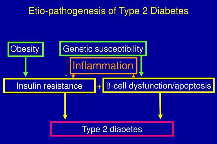 Etio pathogenesis of type 2 diabetes