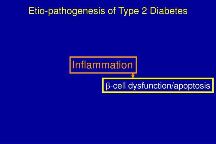 Etio-pathogenesis of Type 2 Diabetes