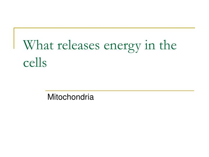 What releases energy in the cells