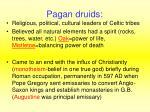pagan druids