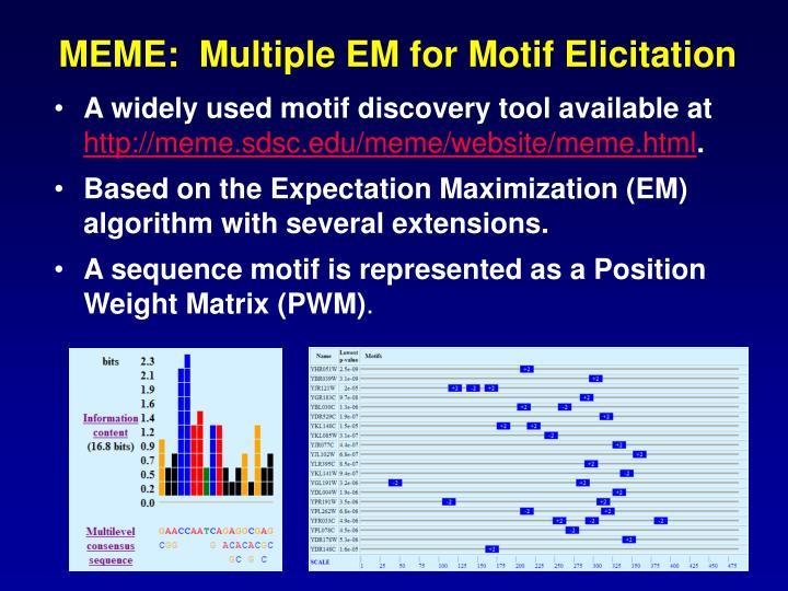 MEME:  Multiple EM for Motif Elicitation