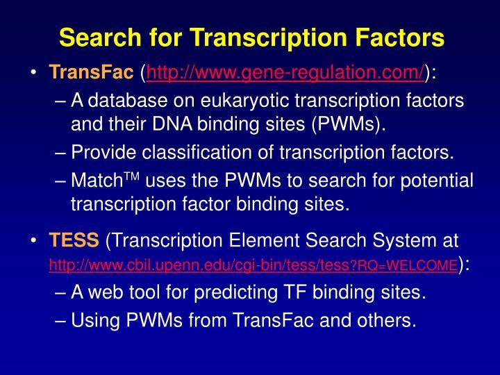 Search for Transcription Factors