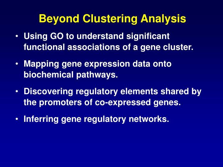 Beyond Clustering Analysis