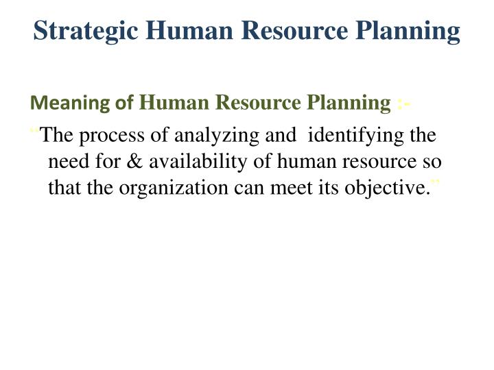 meaning of human resource planning