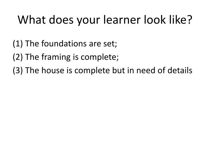What does your learner look like?