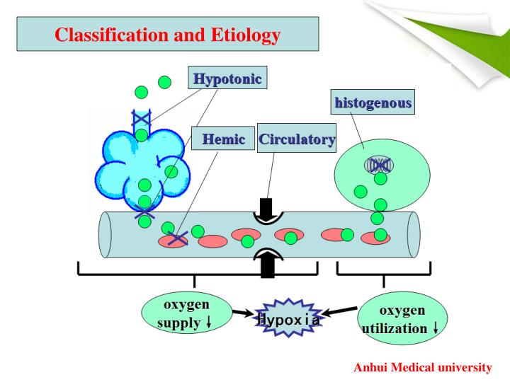 Classification and Etiology