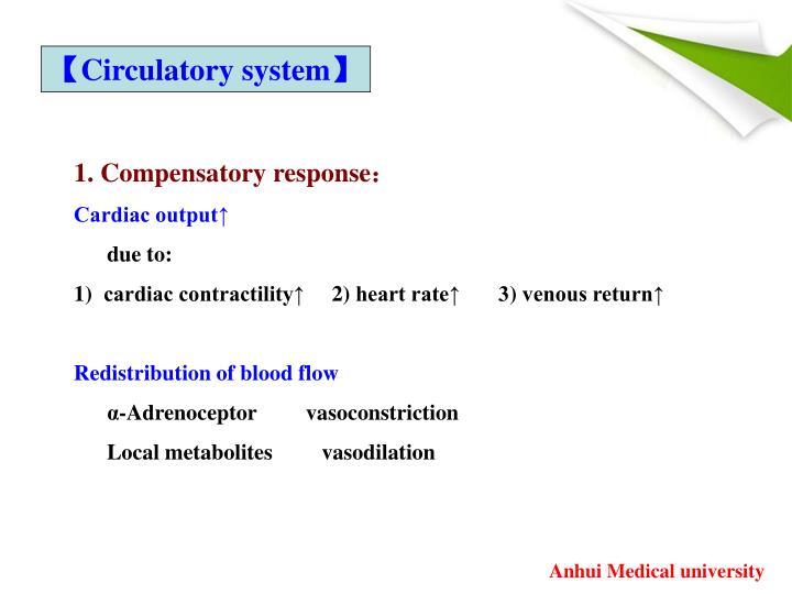 【Circulatory system】
