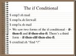the if conditional1