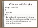 while and until looping2