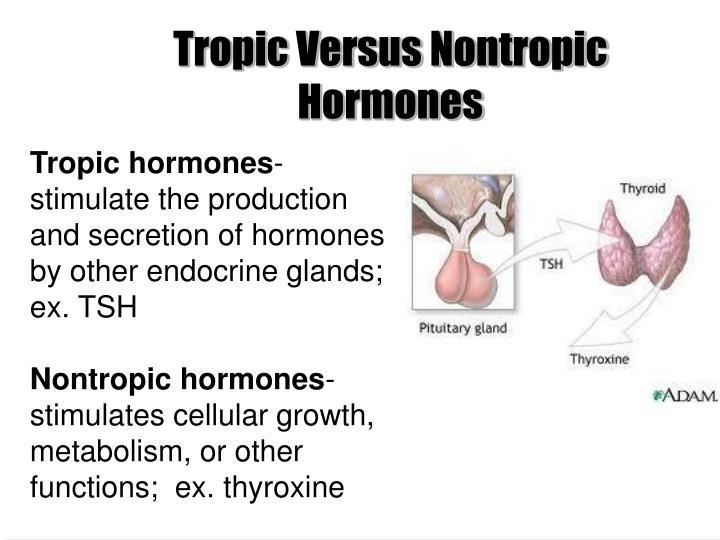 Tropic Versus Nontropic Hormones
