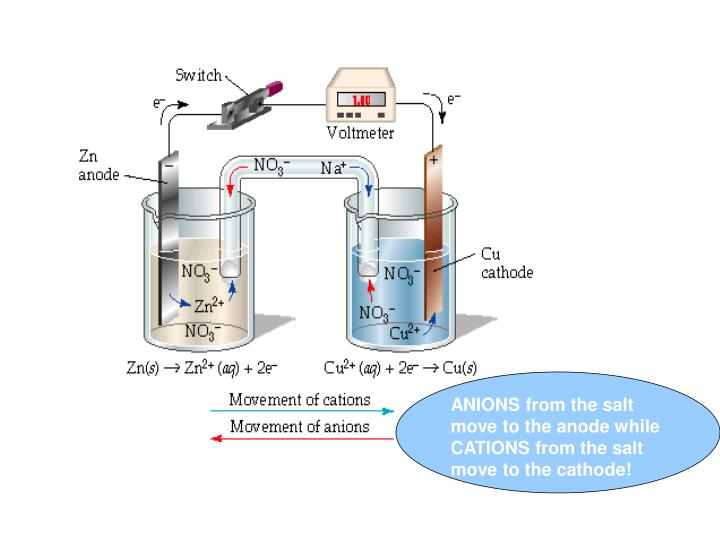 ANIONS from the salt move to the anode while CATIONS from the salt move to the cathode!