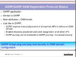 gorp garp oam registration protocol basics