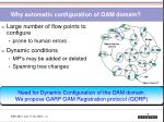 why automatic configuration of oam domain