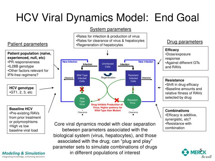 HCV Viral Dynamics Model:  End Goal