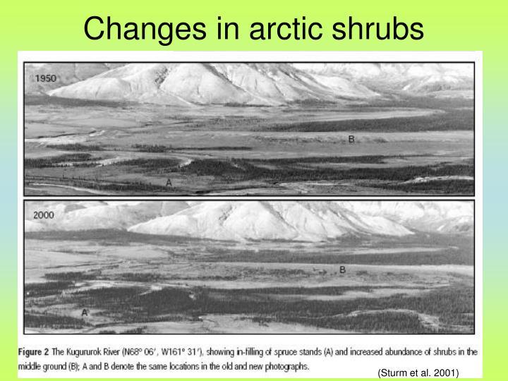 (Sturm et al. 2001)