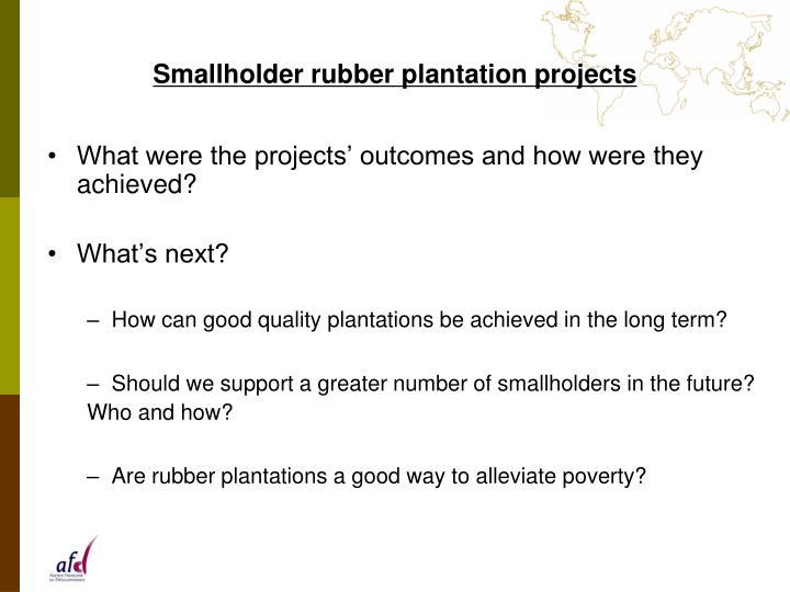 Smallholder rubber plantation projects