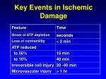 key events in ischemic damage