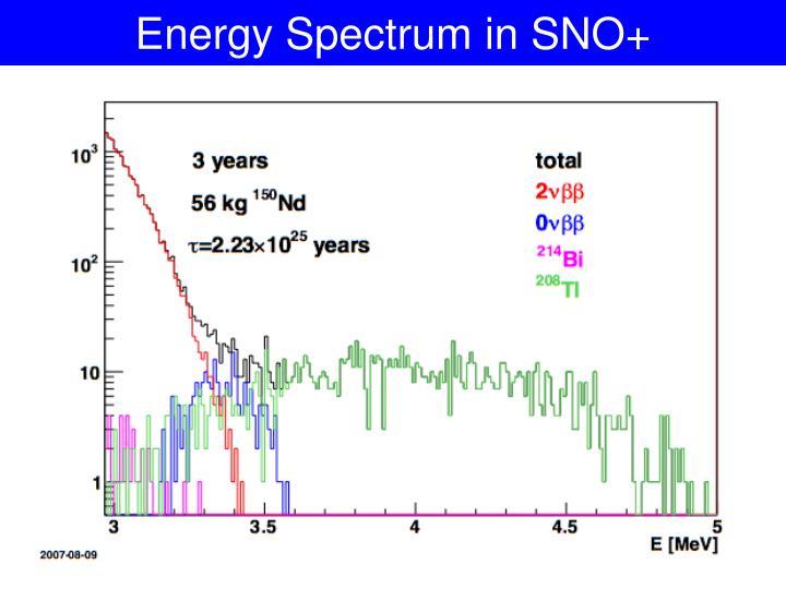 Energy Spectrum in SNO+