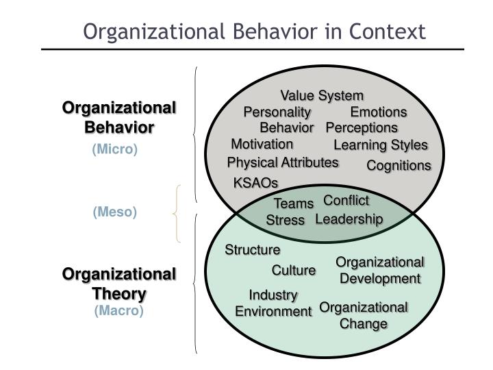 organizational behavior team review and Organizational behavior final practice task interdependence refers to the degree to which team members interact with and rely on other organizational.