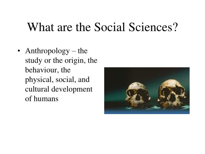 What are the social sciences