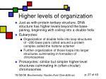higher levels of organization