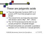 these are polyprotic acids