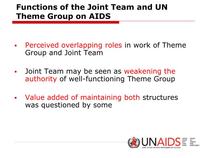 Functions of the Joint Team and UN Theme Group on AIDS