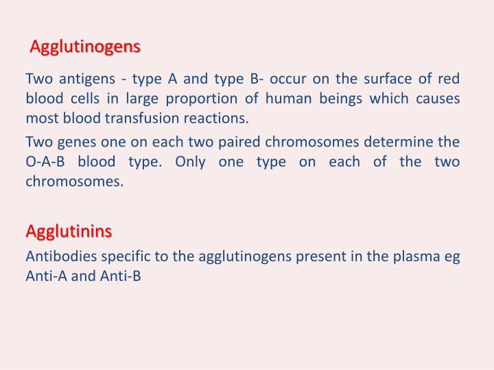 Agglutinogens