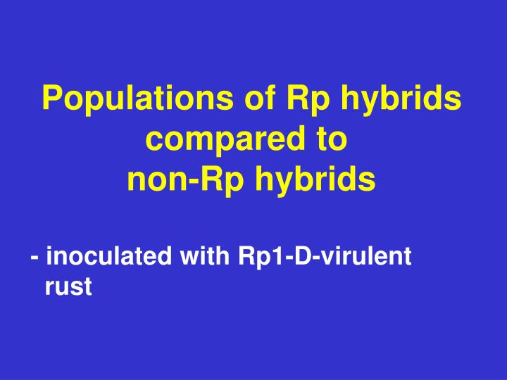 Populations of Rp hybrids
