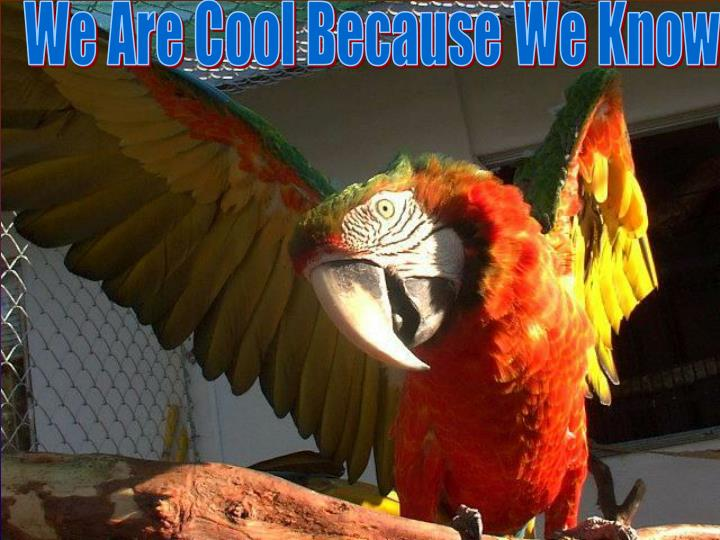 We Are Cool Because We Know