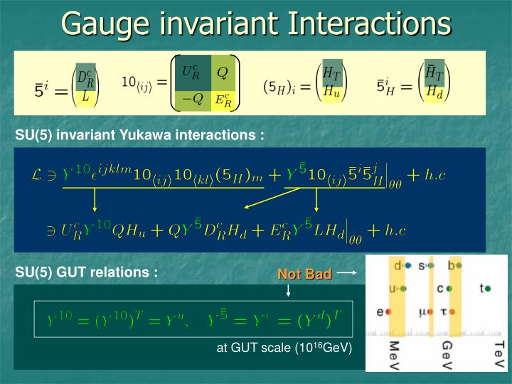 Gauge invariant Interactions