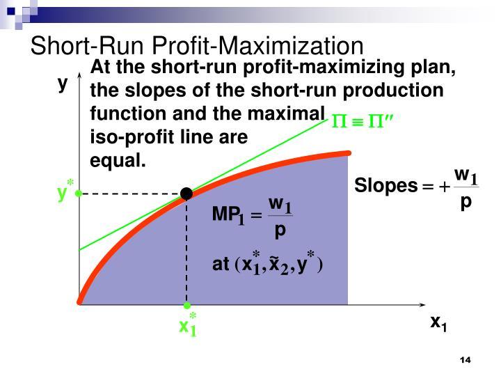 Short-Run Profit-Maximization
