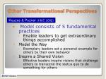 other transformational perspectives1