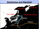 distribution and migration